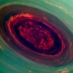 Saturns Rose